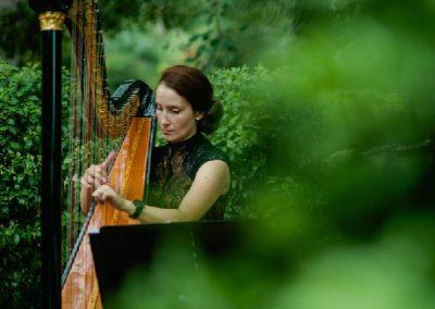 Harp Love
