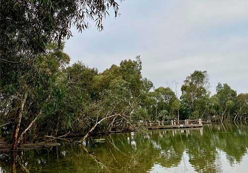 Redleap Reserve